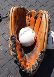 best baseball gloves