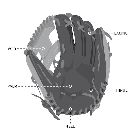 parts of the glove